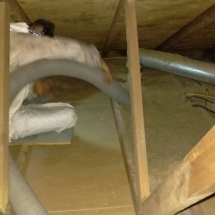 911 Attic Services Cleaning and Insulation