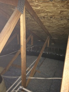 An Attic After Rodent Proofing Services