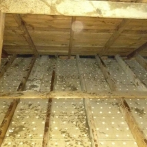 Attic Cleaning and Rodent Proofing in Process